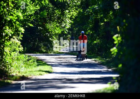 A woman with a stroller walks down a paved path through the woods.
