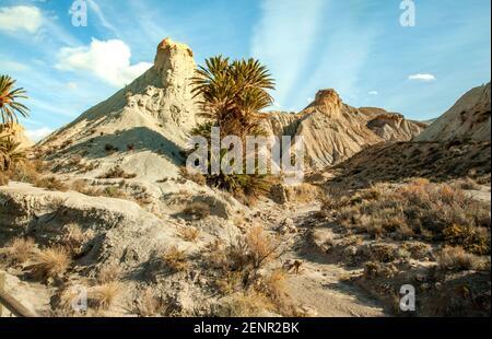 Hills landscape  of the Tabernas desert Almeria Spain Nature Adventure Travel Europa