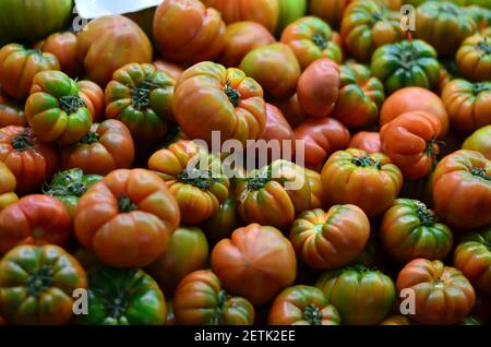 Fresh red and green tomatoes, freshly harvested from the garden, ready for sale at the vegetable market. Stock Photo