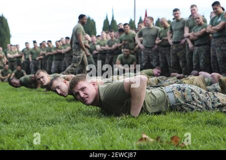 The Marines of 11th Marine Regiment prepare to go compete in a tug-of-war competition in celebration Saint Barbara's Day - the patron saint of Artillery - in Las Pulgas, Camp Pendleton, Calif., Jan. 21, 2016. The regiment remembered those artillerymen who have gone before them with a memorial service, inducted new members into the Honorable Order of Saint Barbara, and added some levity with a homemade trebuchet competition. (Photo by DoD)
