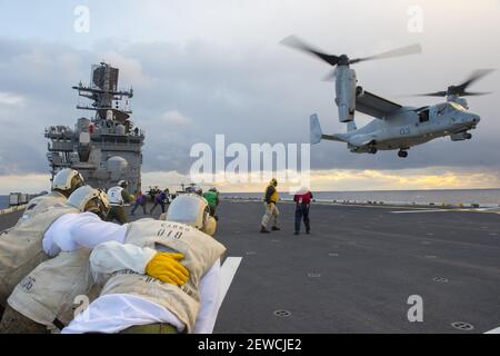 NORTH PACIFIC OCEAN (Jan. 25, 2016)  Marines assigned to Combat Cargo aboard amphibious assault ship USS Bonhomme Richard brace for the wind as a MV-22 Osprey, attached to Marine Medium Tiltrotor Squadron (VMM) 265 (Reinforced), lands on the flight deck. Bonhomme Richard is the lead ship of the Bonhomme Richard Amphibious Ready Group and is forward-deployed in the U.S. 7th Fleet area of operation. (Photo by Mass Communication Specialist 2nd Class Stacy M. Atkins Ricks/U.S. Navy) *** Please Use Credit from Credit Field *** Stock Photo