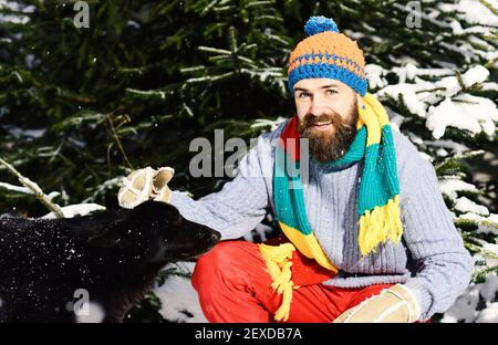 Guy with smiling face with firtrees covered with snow on background, defocused. Winter walks concept. Man wears knitted hat, scarf and gloves with black dog. Macho with beard pats dog. - Stock Photo