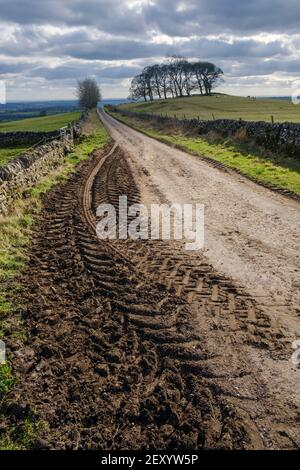 Muddy tractor tracks, Gag Lane, Thorpe, Peak District National Park, Derbyshire Stock Photo