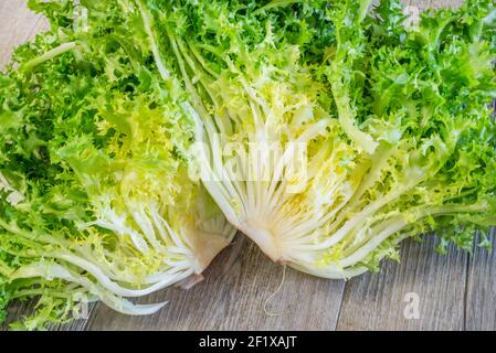 Curly salad rotating on white background