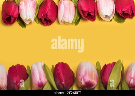 Creative minimal composition, frame of beautiful colorful tulips on yellow background. Spring and Easter greeting card, banner with free space for tex