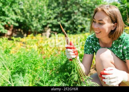 Caucasian young woman in gardening gloves, holding a bunch of freshly picked carrots and looking at it with a splint. Vegetation in the background.Con