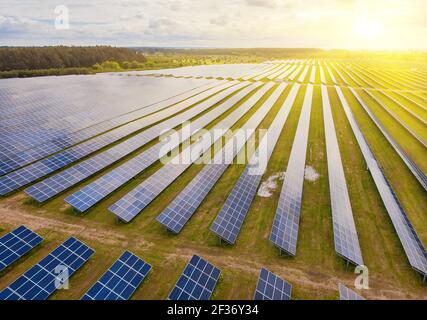 Solar power plant in the field. Aerial view of Solar panels. Solar farm. The source of ecological renewable energy.