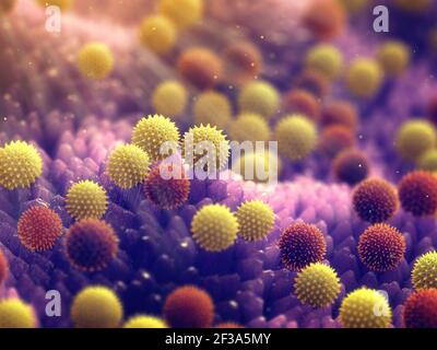 Pollen allergy is also known as hay fever or allergic rhinitis. Pollen grains illustration.