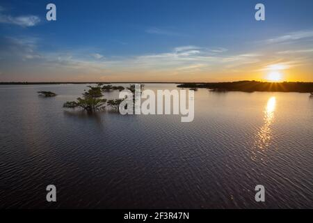 Beautiful sunset landscape view on sunny summer day in the Amazon rainforest, Brazil. Trees submerged in the flooded river season. Concept of nature. - Stock Photo
