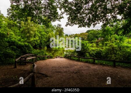 Empty bench in Central Park by the walking trail and trees