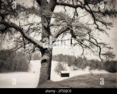 DE - BAVARIA: Wintertime along the Kalvarienberg in Bad Toelz