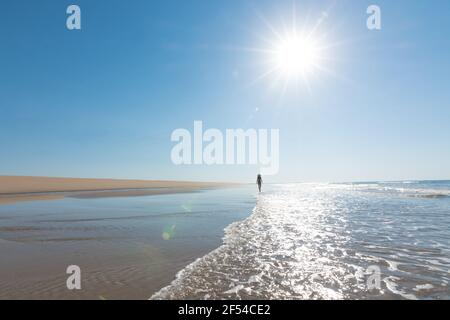silhouette of young woman wearing black bikini and hat walking on a lonely beach. vacation, leisure, relaxation and tranquility concept