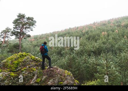 Male hiker admiring surrounding forest from top of large boulder