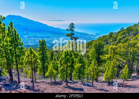 Aerial view of La Palma from hiking trail to Pico Bejenado, Canary islands, Spain. Stock Photo