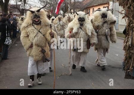 Masked Busós walk through the downtown on the Farsang Tuesday during the Busójárás Carnival in Mohács in Baranya County, Hungary.  Traditional annual masked celebration of the Šokci ethnic group held at the end of the carnival season (Farsang) in Southern Hungary.