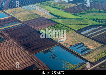 Goldenstedter Moor, Vechta County, Lower Saxony, Germany - Stock Photo