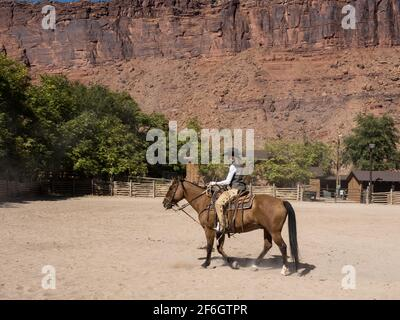 A cowgirl wrangler riding her horse in a corral on a ranch near Moab, Utah.  She wears leather chaps to protect her legs from thorny brush on the rang