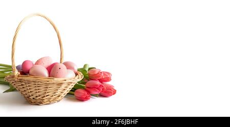 Easter pink eggs in a basket and a bouquet of pink red tulips isolated on a white background. Easter composition. Banner. Space for text.