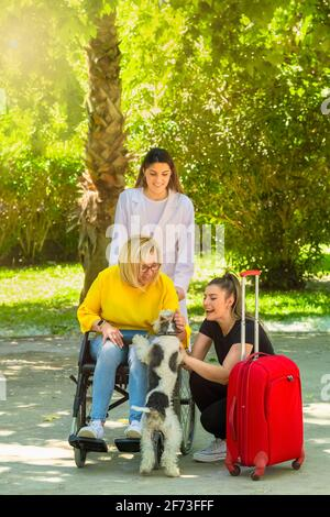 A group of women, one of them in a wheelchair, pet a cheerful dog at a park on an out of focus background. disability and fun concept.