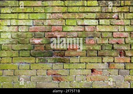 Brick wall background variety of bricks brick wall showing signs of weathering and wear, well worn hand made bricks with lime mortar High resolution - Stock Photo