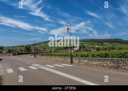 View to the road and vineyard in Burgundy Bourgogne home of pinot noir and chardonnay in summer day with blue sky. Cote d'Or