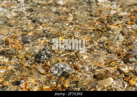 bright Golden stones at the bottom of a clear stream. Abstract pattern of pebbles under the surface of the water.. Background.