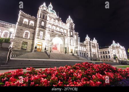 super bright building at night in summer with red flowers in the foreground