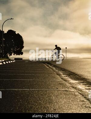 Silhouette image of a cyclist riding on the road at Milford beach, Auckland. Vertical format.