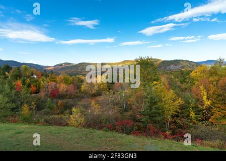 Mountain landscape covered with deciduous forests at the peak of fall foliage on a clear autumn day