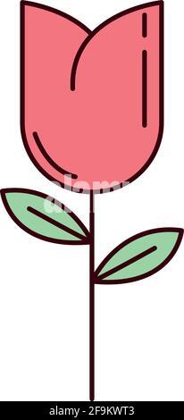 flower tulip decoration cartoon isolated