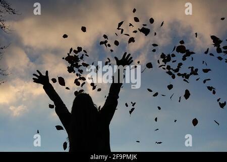 16.11.2018, Neuhardenberg, Brandenburg, Germany - Silhouette, woman throwing autumn leaves in the air. 00S181116D438CAROEX.JPG [MODEL RELEASE: YES, PR