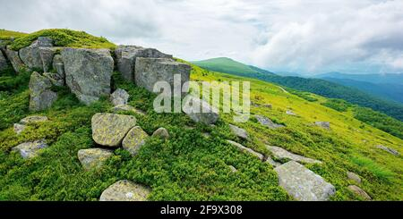 alpine mountain scenery in summer. cloudy weather. stones and boulders on grassy hills and meadows. beautiful view in to the distance