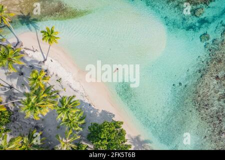 Beach travel vacation top down drone photo of luxury tropical paradise beach with elegant woman swimming in perfect turquoise water in coral reef