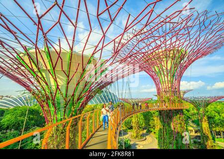 Singapore - April 29, 2018: asian tourist takes selfie with smart phone while walking on skybridge or OCBC Skyway of Supertree Grove in Gardens by the