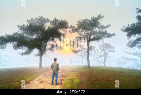 Traveler man stands watching the dawn on a misty morning pine hill on the top of the highlands of Da Lat, Vietnam