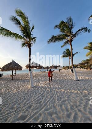 Palm Beach Aruba Caribbean, white long sandy beach with palm trees at Aruba Antilles, woman relaxing on the beach