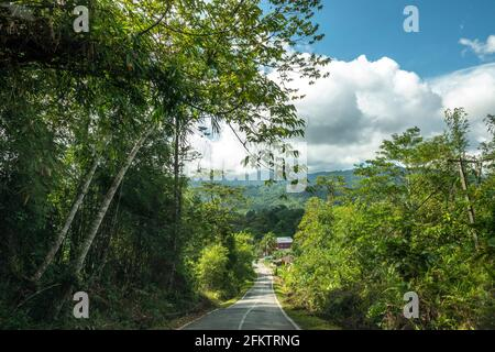 Kampung Semaru road, Padawan, Sarawak, East Malaysia