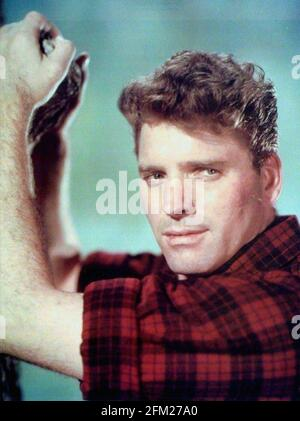 BURT LANCASTER (1§913-1994) American film actor and producer about 1945