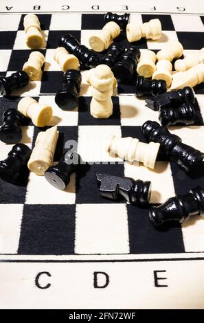 Still-life art on a underdog champ defeating all chess opposition. Rook of the year