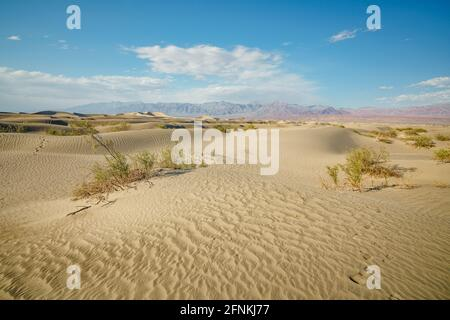 Mesquite Flat Sand Dunes in Death Valley National Park, and beautiful cloudy sky on background