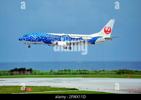 Japan Transocean Air, JTA, Boeing B-737/400, JA8939, Blue Whaleshark,  Landing, Naha Airport, Naha, Okinawa, Ryukyu Islands, Japan