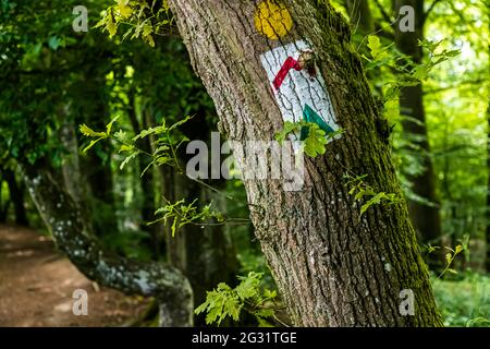 Marked hiking trails in Luxembourg