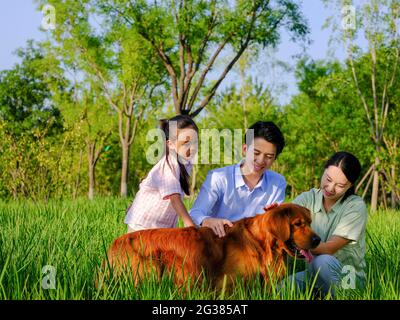 Happy family of three and pet dog playing in the park high quality photo