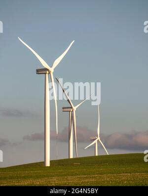 Renewable energy....Wind turbines on a hill at sunset, near Caledon, Western Cape, South Africa