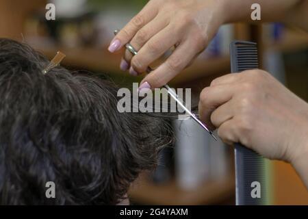 female hands doing a haircut on dark hair. soft focus