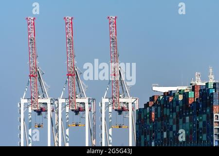 Abstract view of dockside cranes with a container ship - July 2018