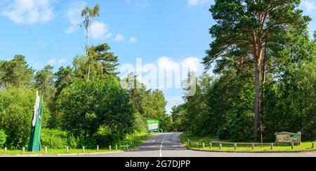 Main road entrance to Moors Valley Country Park and Forest with wooden carving sign and road leading off through the trees on a bright summers day.