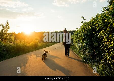 Young happy woman with dreadlocks walk with small dog corgi in park. Back view.