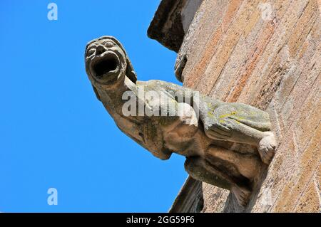 FRANCE. PYRENEES REGION. AVEYRON (12) RODEZ. THE GARGOYLES OF THE NOTRE DAME CATHEDRAL