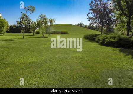 Summer landscape with hill covered with green grass surrounded by trees